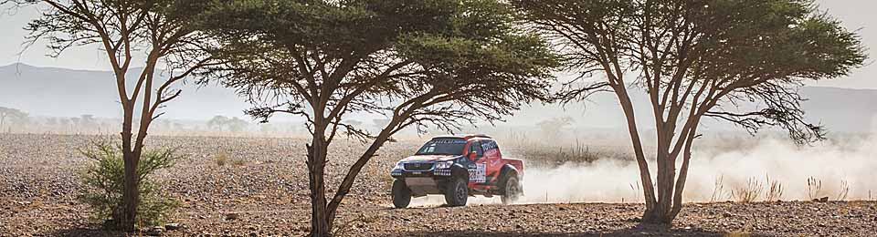 FLAT OUT IN MOROCCO: Trees are few and far between in the drier parts of Morocco - so they add relief to photography. Image Courtesty Toyota SA
