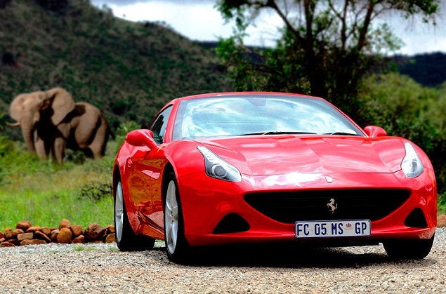 NOT A TRUCK ROAD! Ferrari California T in South Africa's Pilanesberg game park. Image: Ferrari South Africa