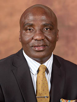 JOE MANGANGYANI: Appointed South African Minister of Transport in March 2017. Image: Government records