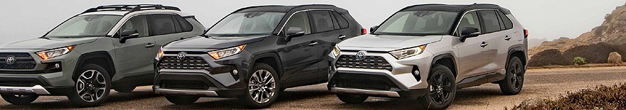 2019 TOYOTA RAV4: Quarter-century on, and the icon that was launched on Muizenberg beach in Cape Town relaunched - again. Image: Toyota US / NewspressUSA