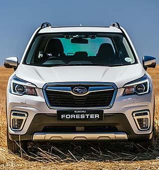 SUBARU FORESTER MAKES IT FOR CHRISTMAS: Image: Subaru SA