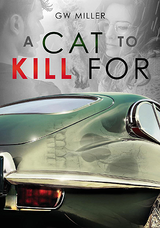THRILLER FOR CAR FANS: Cover of a new book set in famous Watkin's Glen. Image: Supplied